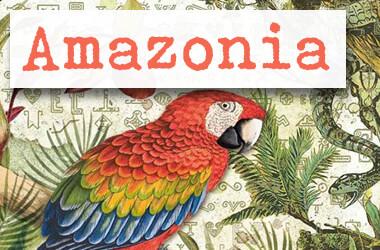 Neue Stamperia Scrapbooking Serie AMAZONIA - jetzt im kunstpark
