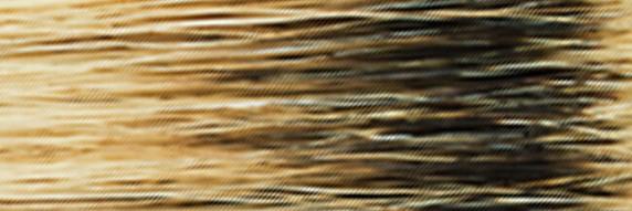 Haarpinsel Pinselserien aus Natur- und E