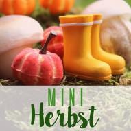Herbst Minigarten - Pilze, Moos & He