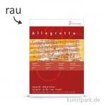 Hahnemühle ALLEGRETTO - 10 Blatt, 150g fein rau