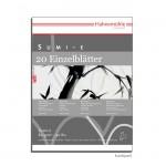 Hahnemühle SUMI-E - 20 Einzelbogen, 80g, 50 x 65 cm
