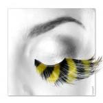 Wimpern, Gelbe Federn  mit schwarzen Längsstreifen