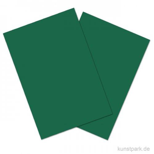 Bastelkarton COLORS, 20 Blatt, 180g, DIN A4 DIN A4 | Tannengrün