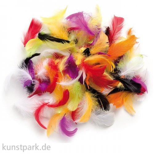 Deco-Federn - Multicolor, 10g sortiert