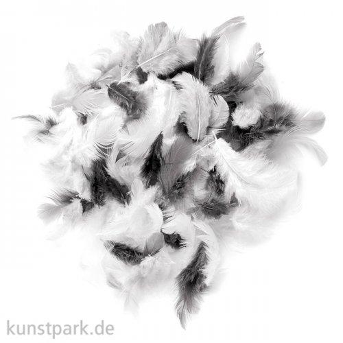 Deco-Federn - Weiß-Schwarz, 10g sortiert