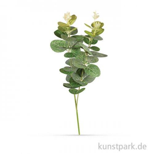 Eukalyptuszweig, 34 cm