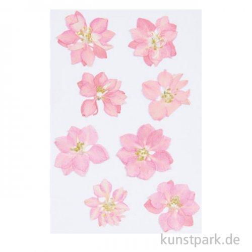 Gepresste Blüten - Rittersporn Rosa, 8 Stück