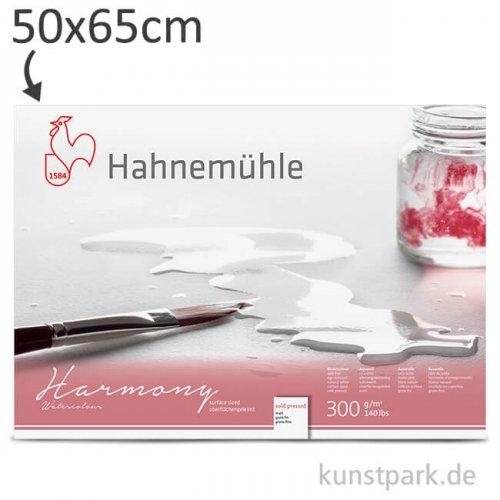 Hahnemühe HARMONY Aquarell Papier, 10 Einzelblatt, 300g - matt 50 x 65 cm