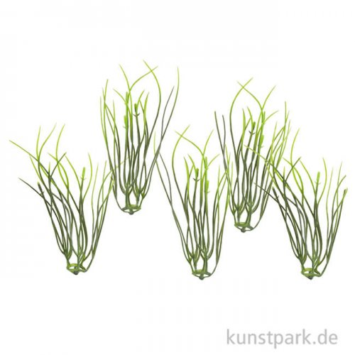 Mini Gräser, 9 cm, 5 Stück