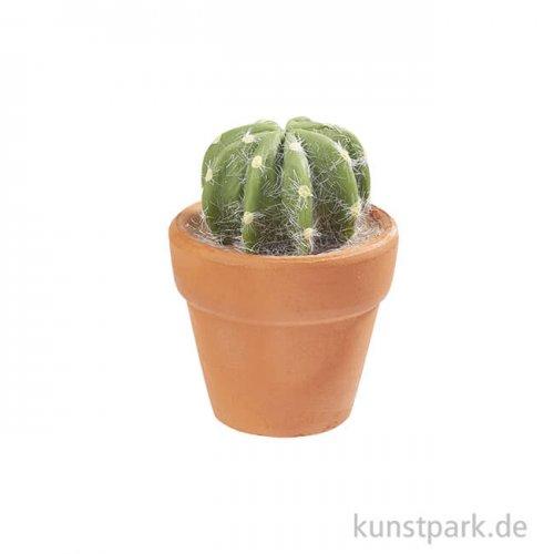 Mini Kaktus im Terracottatopf, rund, 4,5 cm