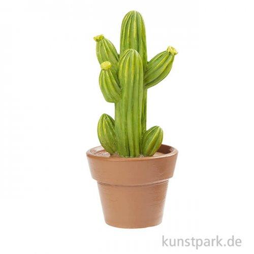 Mini Kaktus im Topf, lang, 9,5 cm
