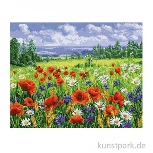 Schipper Malen nach Zahlen, Blumenwiese