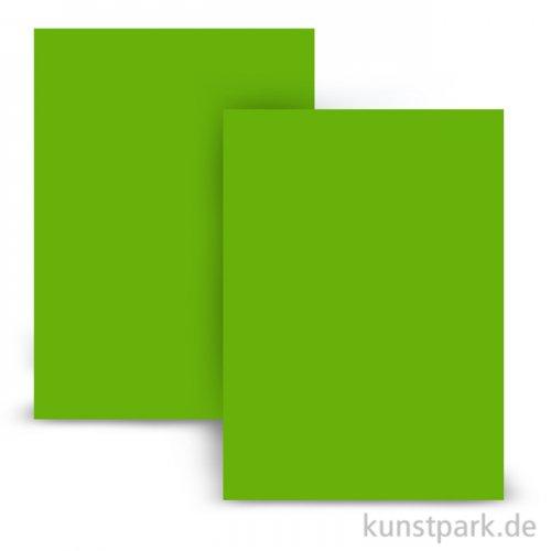 Moosgummi 20x30 cm, 2mm Tafel | Hellgrün