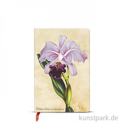 PAPERBLANKS Notizbuch - Botanikmalerei - Brasilianische Orchidee, 95 x 140 mm, Blanko