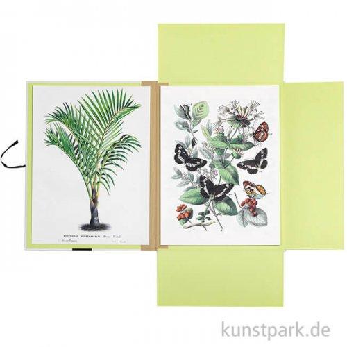 PEPIN Art Portfolios - Natural History, 8 Stück