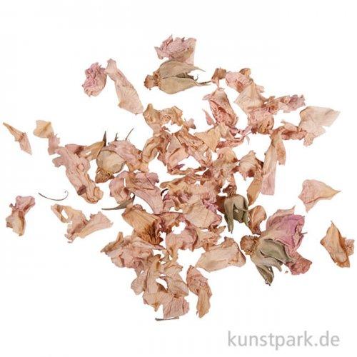 Rayher helle Rosenblütenblätter, 3 g im Beutel