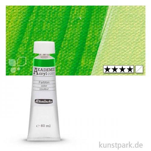 Schmincke AKADEMIE Acrylfarben 60 ml Tube | 557 Maigrün