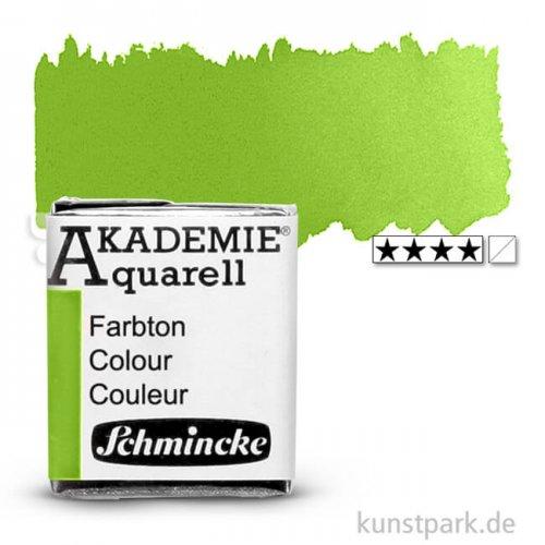 Schmincke AKADEMIE Aquarellfarben 1/2 Napf | 552 Maigrün
