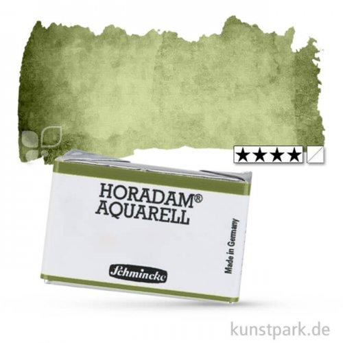 Schmincke HORADAM Aquarellfarben 1/1 Napf | 516 Grüne Erde