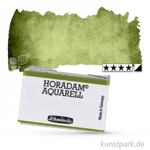 Schmincke HORADAM Aquarellfarben 1/1 Napf   525 Olivgrün gelblich
