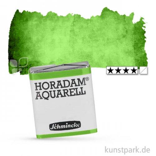Schmincke HORADAM Aquarellfarben 1/2 Napf | 526 Permanentgrün