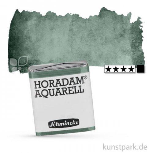 Schmincke HORADAM Aquarellfarben 1/2 Napf | 784 Perylengrün