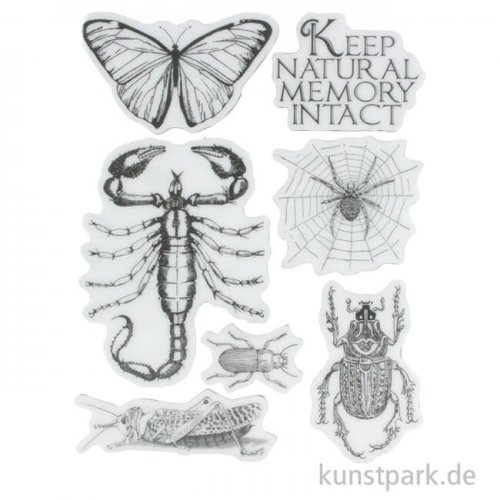 Stamperia Natural Rubber Stamp - Amazonia Butterfly