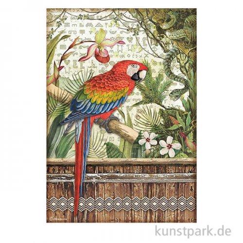 Stamperia Reispapier - Amazonia Parrot, DIN A4