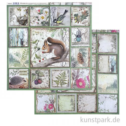 Stamperia Scrappapier - Forest Squirrel, 30,5 x 30,5 cm