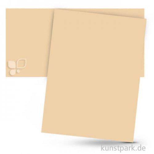 Tonpapier 50x70 cm, 10 Bogen, 130g 10 Bogen   Chamois