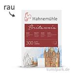 Hahnemühle BRITANNIA Aquarell 10 Einzelblatt, 300g, 50 x 65 cm rau