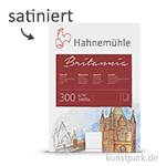 Hahnemühle BRITANNIA Aquarell 10 Einzelblatt, 300g, 50 x 65 cm satiniert