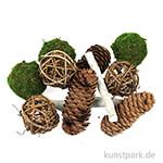 Zapfen-Potpourri braun-grün