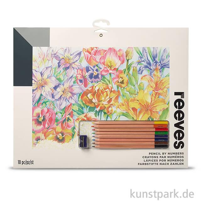 Malen nach Zahlen mit Buntstiften - Blumen