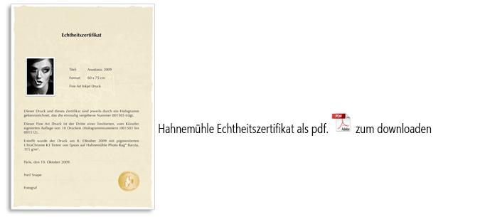 Hahnemühle Echtheitszertifikat mit Hologramm, 25 Blatt, 150g, DIN A4